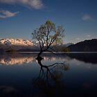 Lake Wanaka.....South Island of New Zealand by Imi Koetz