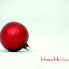 Happy Holidays by Robin Webster