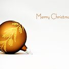 Merry Christmas by Robin Webster