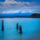 Okarito Lagoon by Yukondick