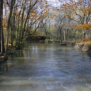 Pike River Flowage by kkphoto1