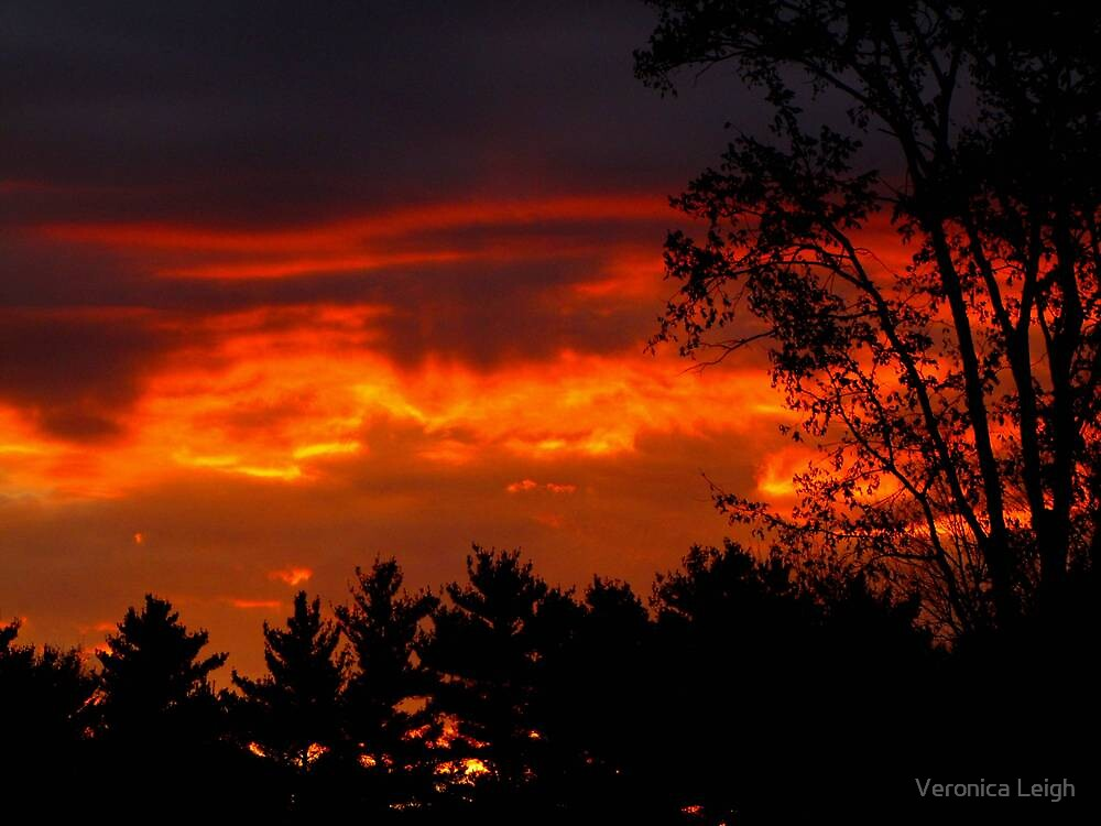 October Sunset by Veronica Schultz