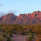 Organ Mountains At Sunset by Larry Costales