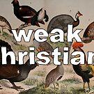 Weak Birds by Ethan Renoe