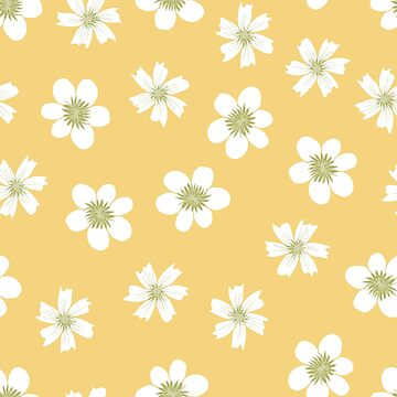 white flowers on pale yellow by swoldham