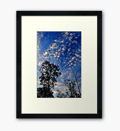 Reach for Blue Framed Print
