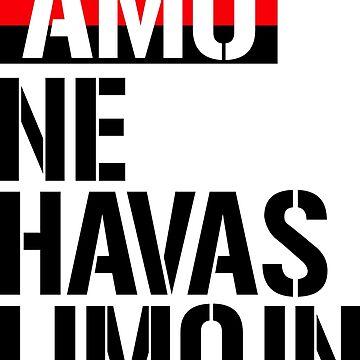 Amo ne havas limojn - Love has no limits by jonizaak