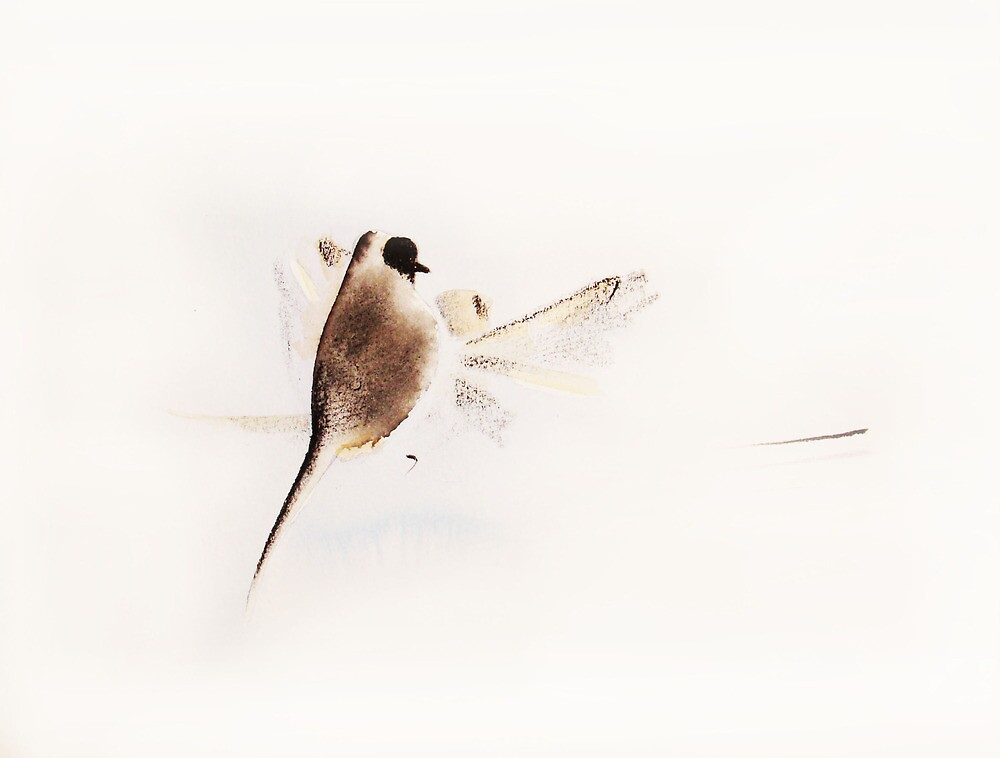 Bird on a wire on a windy day by Andrea Preda