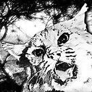 Wild big cat ( all styles animals series ) by Marilyns