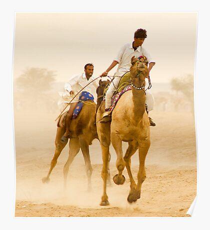 Camels of Rajasthan Poster