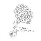 Scarlet Carnation Ohio State Flower by Journey Home Made by JourneyHomeMade