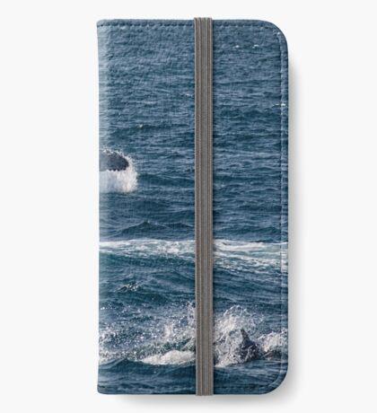 Spielerische Meeressäuger iPhone Flip-Case