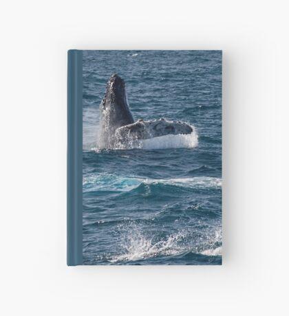 Spielerische Meeressäuger Notizbuch