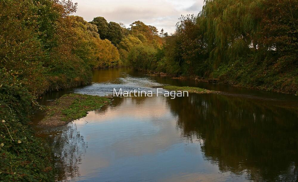 Broadmeadow River by Martina Fagan