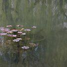 Waterlillies (Monet's Garden) by Richard Pitman