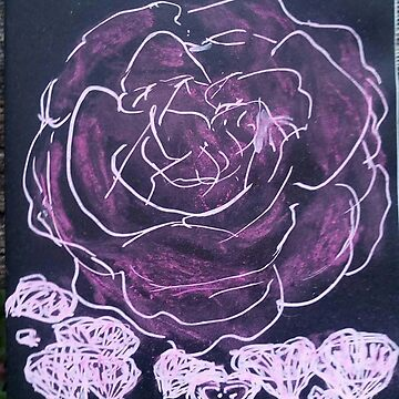 A Black Rose and Pimk Lace by MardiGCalero