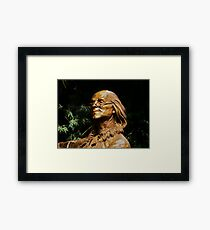Franklin Framed Print