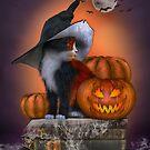 Halloween cat with pumpkin by Andrea Tiettje