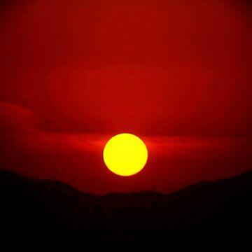Sun Spot by vitoz