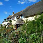 Cottages at Porlock, Somerset, England by trish725