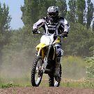 Dirt Rider by Bob Martin
