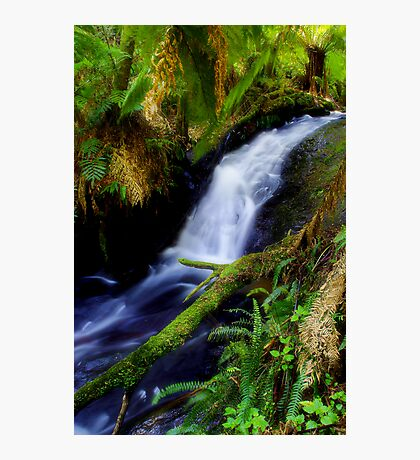"""Anne's Cascades"" Photographic Print"