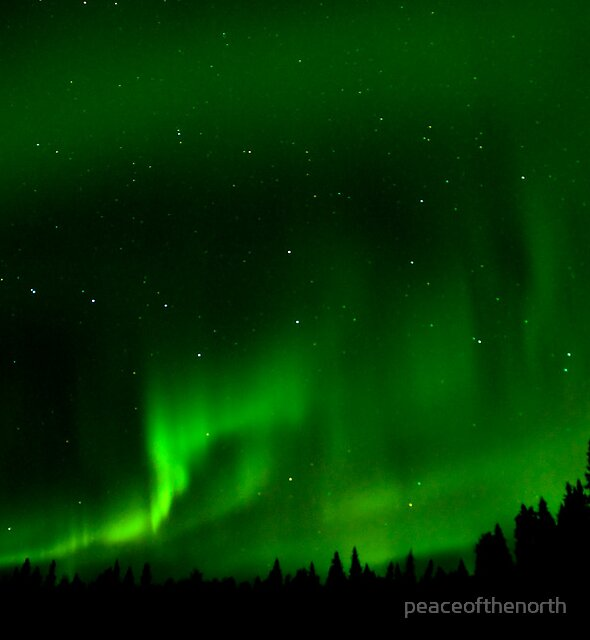 Auroras and the Dipper by peaceofthenorth