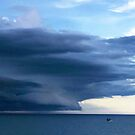 Storm Watch by Mary Kaderabek-Aleckson