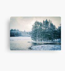 Winter at a Loch Near Kingussie (Cat Burton Photography) Canvas Print