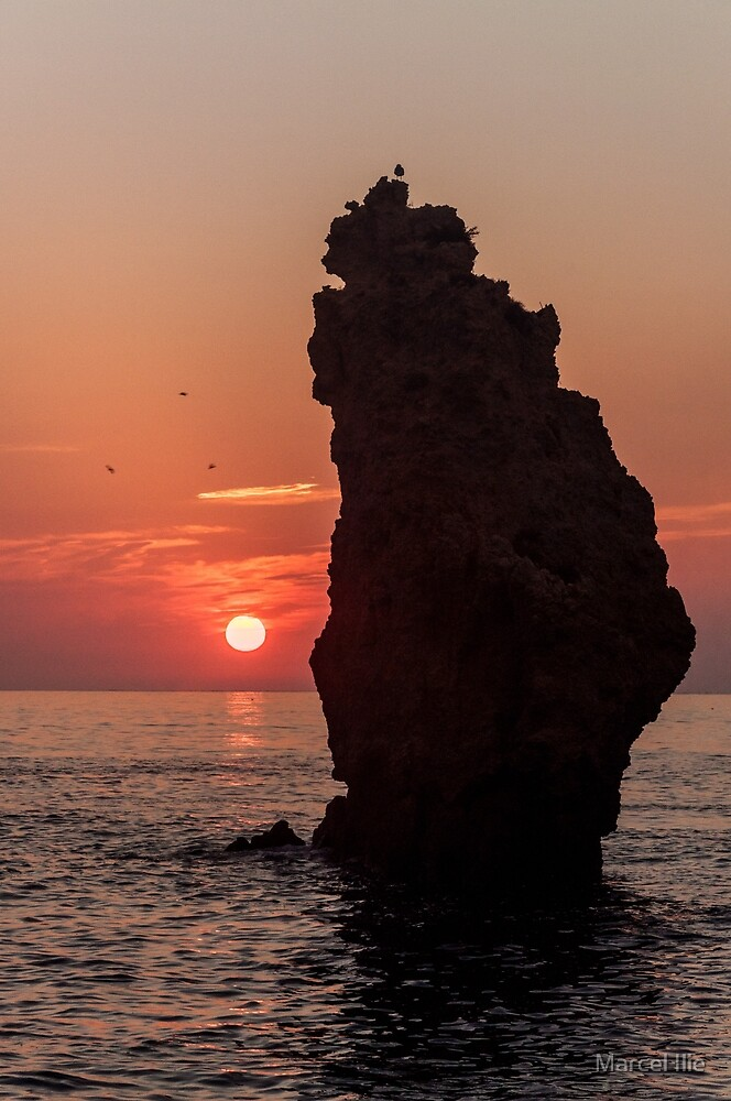 the Sunrise by Marcel Ilie