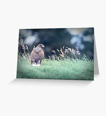 Watchful Eye Greeting Card