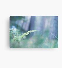Ferns and Daydreams (Cat Burton Photography) Canvas Print
