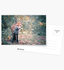 A Scottish Fox Postcards