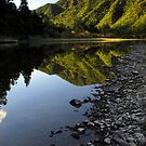 Waioeka gorge by Paul Mercer