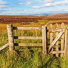 Derbyshire Peak District high moors in autumn by Chris Warham