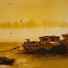 Boats resting at low tide by Mick Kupresanin
