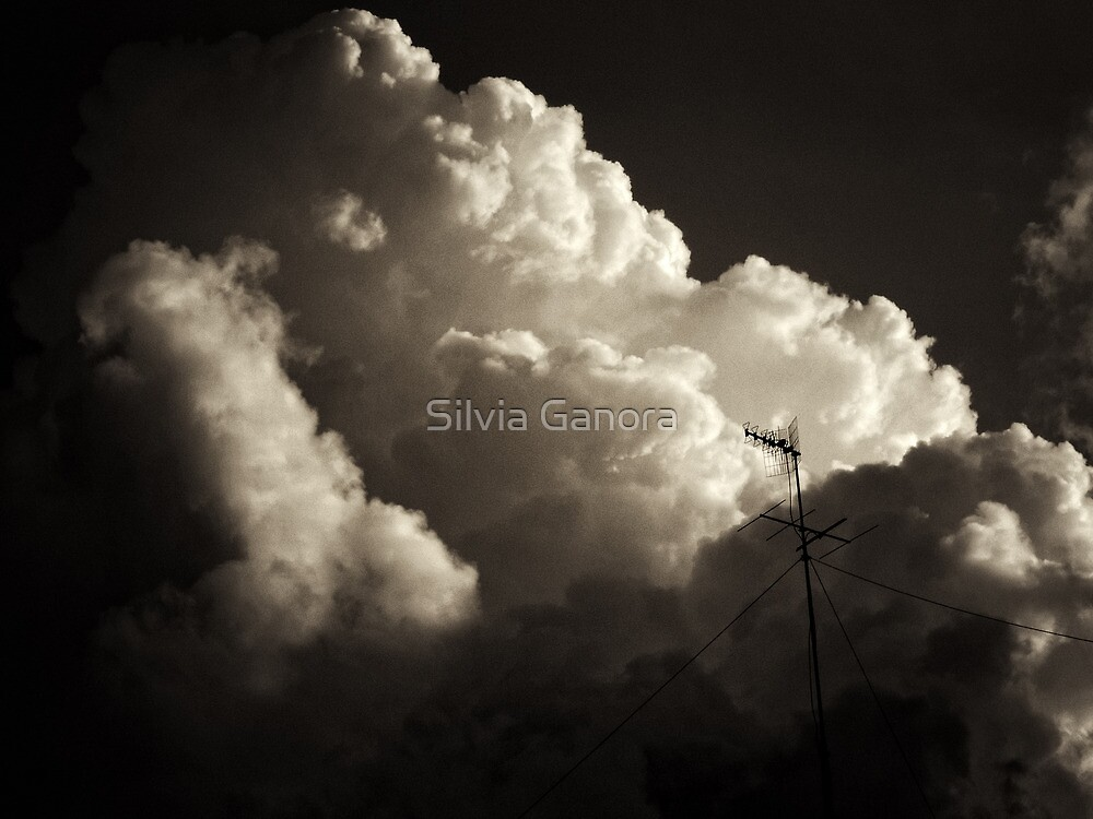 Give me a sign of your presence by Silvia Ganora