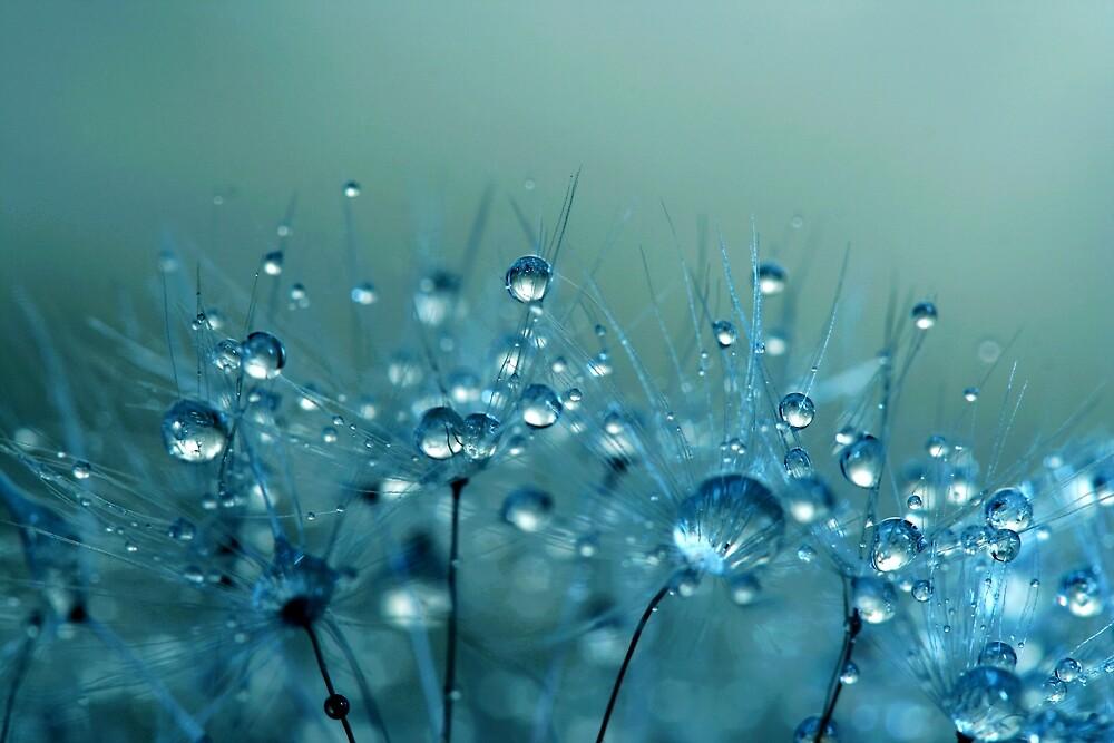 Blue Shower by Sharon Johnstone
