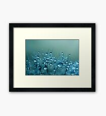 Blue Shower Framed Print