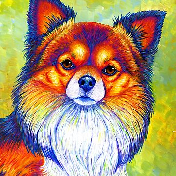 Colorful Long Haired Chihuahua Dog by lioncrusher