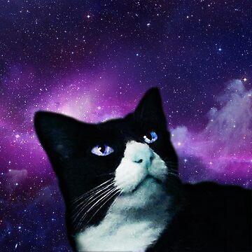 Boots Cat Galaxy by kittiemeow