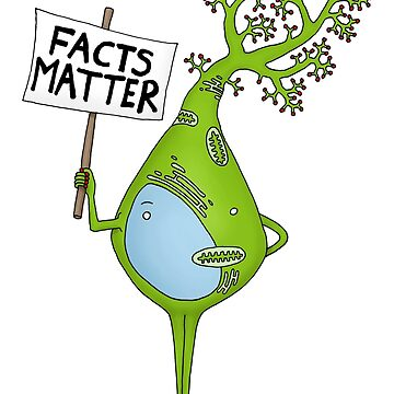 Facts Matter by Immy