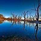 Noora Basin Dawn by Dave  Hartley