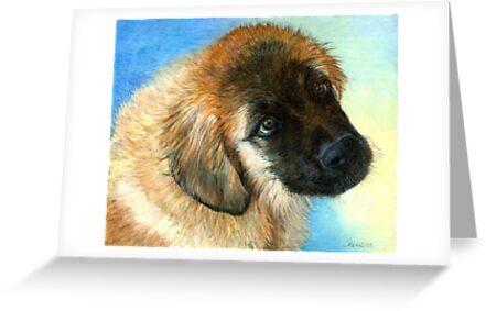 Leonberger Puppy Dog Portrait by Oldetimemercan