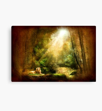 The King's Humility Canvas Print