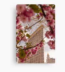 Lienzo Edificio Flatiron en Nueva York en primavera