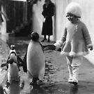 Penguin Walk by ToastCrumbs