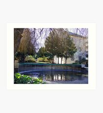 Oasis In The Launceston Tasmania Art Print