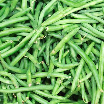 Farm Fresh Green Organic StringSnap Beans Vegan Vegetable V1 by FancyFrocks