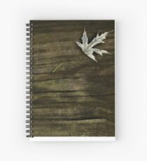 Leaf on Rain-Soaked Stairs  Spiral Notebook